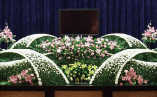 nemuhru-sasayama-10-1_hall01-03